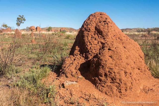 termitai