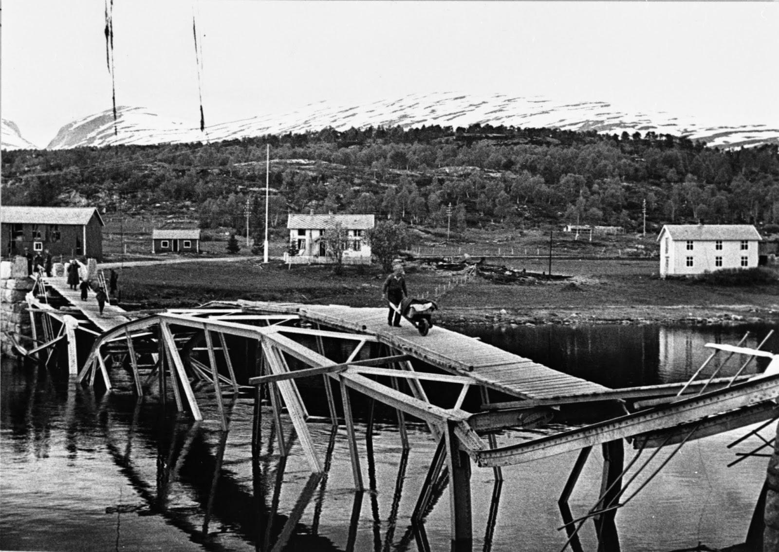 Bodø mappa bilder