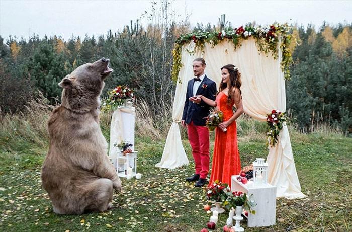 русская свадьба с медведем
