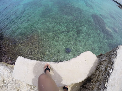 Jellyfish at Mangodlong Rock Resort