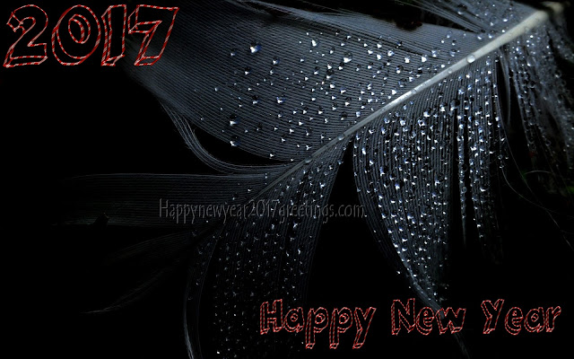 Happy New Year 2017 3D Wallpapers, Images