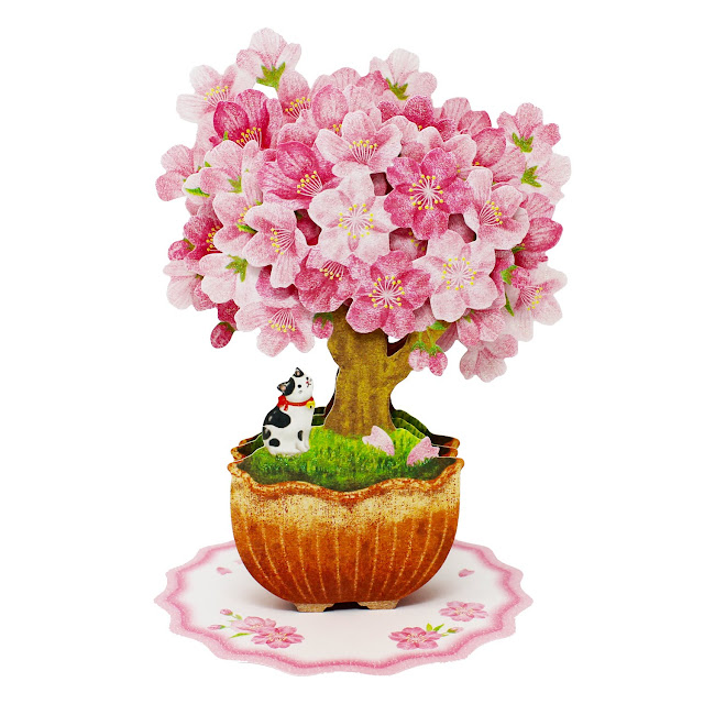 Bonsai Cherry Blossom Tree with Cat Multipurpose Pop Up Greeting Card