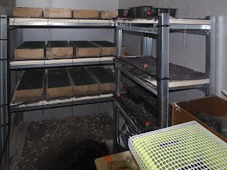 nouvelles installations de la nurserie d'escargots
