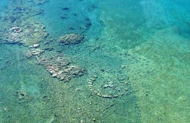Πολλά ψάρια που χρονολογούνται από το site είναι μαλακίες