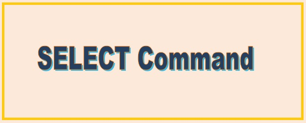 SELECT Command In SQL| DQL Command