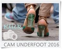 http://vonollsabissl.blogspot.de/2016/07/29-cam-underfoot-mit-nachbars-kater.html