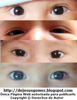 Imágenes de ojos de bebés de Jesus Gómez