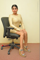 Actress Pooja Roshan Stills in Golden Short Dress at Box Movie Audio Launch  0102.JPG