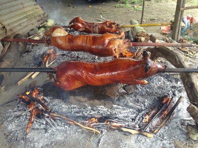 Lechon baboy - czyli pieczona świnia na ruszcie