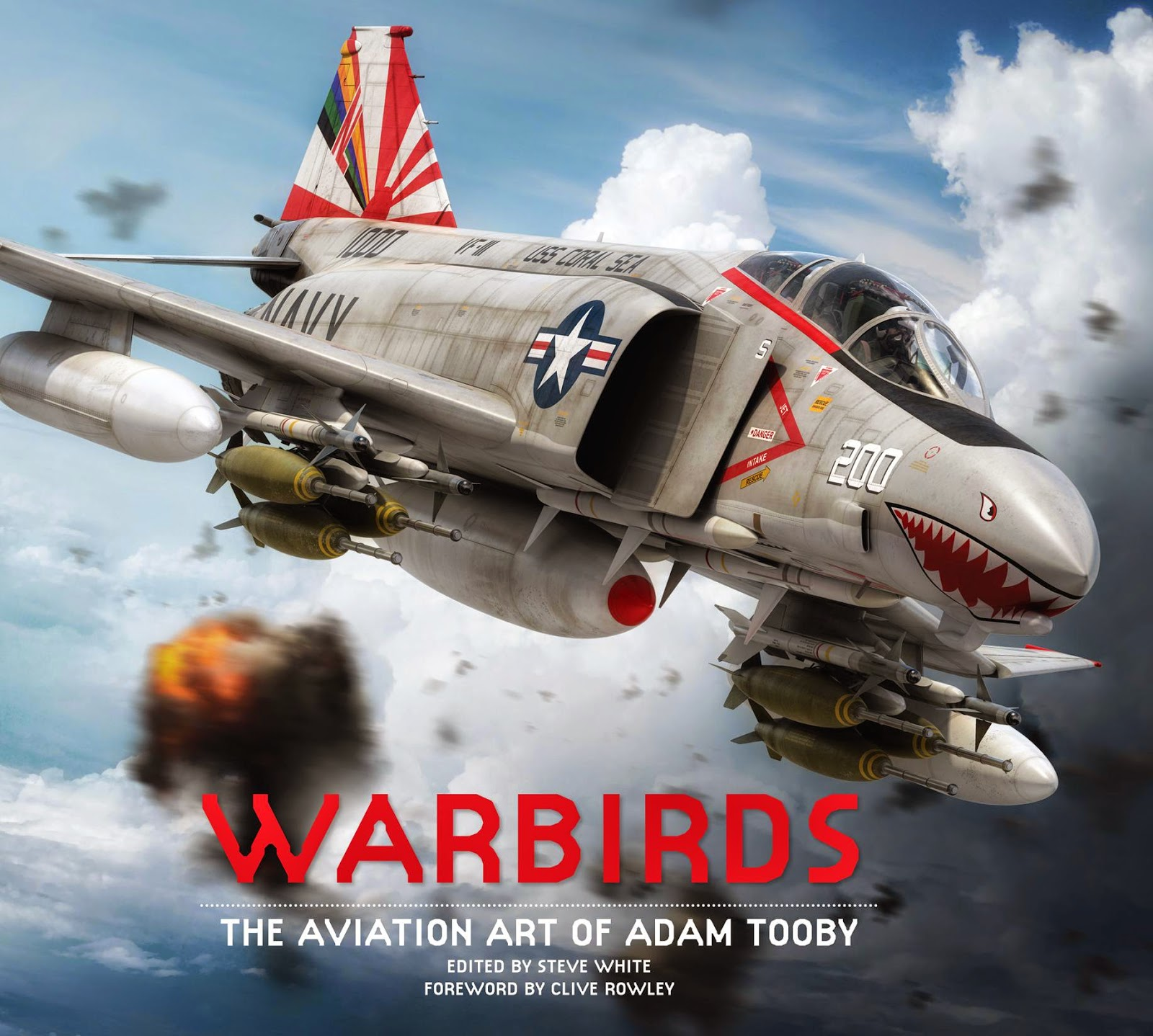 Warbirds  The Aviation Art of Adam Tooby
