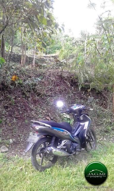 Tanah Dijual di Guwosari dekat PT BRA