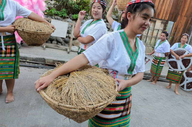 Rice Kidding Aside Harvest Cultural Parade Participant