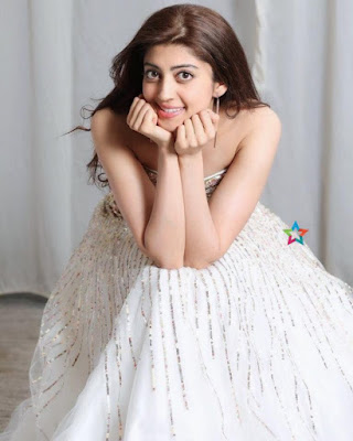 Meet Chan Kitthan Song Actress Pranitha Subhash