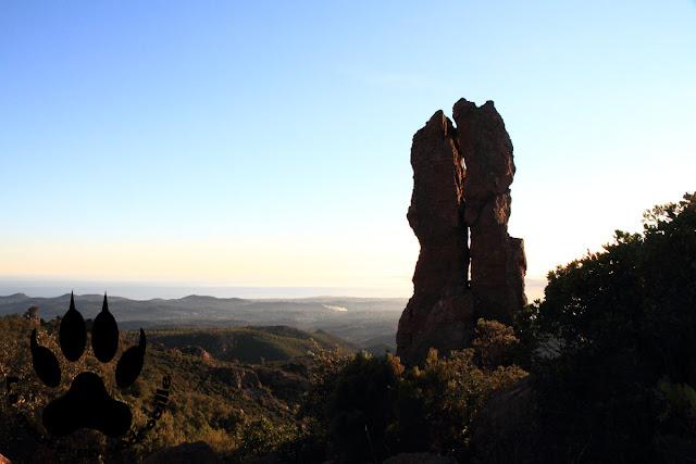 panorama-mont-vinaigre-foret-domaniale-esterel