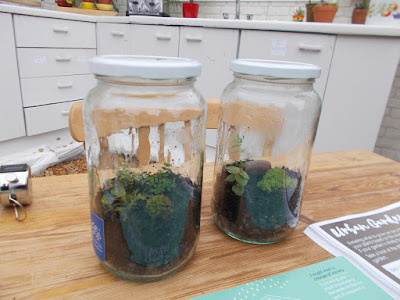 Terrarium in a jar RHS Cardiff Show 2018 Green Fingered Blog