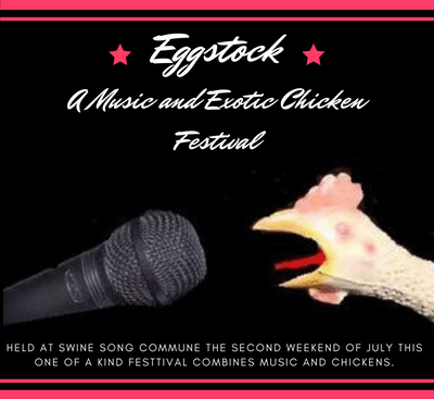 "Plans Being Made for ""Eggstock"": A Music and Exotic Chicken Festival"