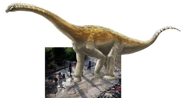 World's longest sauropod dinosaur trackway brought to light