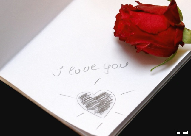 ảnh nụ hồng trên trang lưu bút