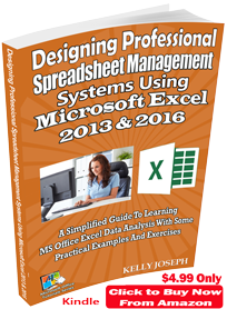 Designing Professional Spreadsheet Management Systems Using Microsoft Excel 2013 & 2016