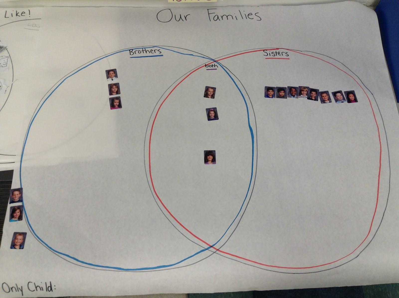 stellaluna venn diagram activity bazooka el wiring mrs curry 39s classroom blog following the common core
