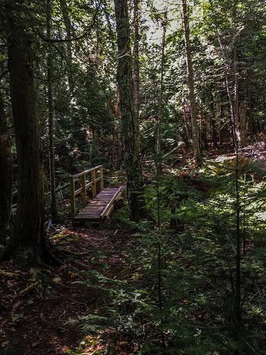 Hiking at Frog Bay National Park