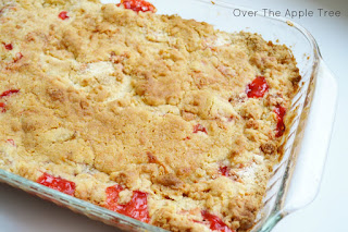 Strawberry Rhubarb Dump Cake, Over The Apple Tree