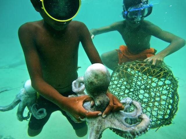 Foto de Ng Choo Kia - Crianças Bajau aprendem a pescar muito cedo, na imagem duas crianças pescam uma lula
