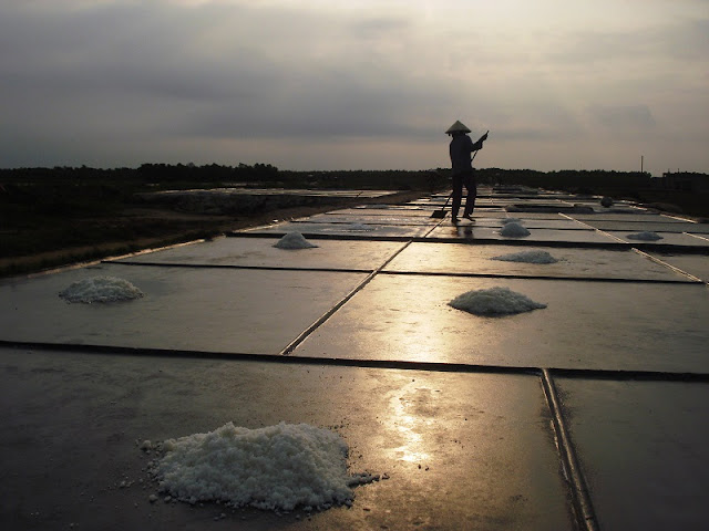 Immense salt fields boast their stunning beauty in scorching sun 3
