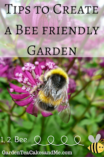 Tips How to create bee friendly garden plants