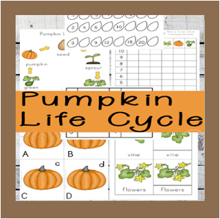 pumpkin life cycle worksheets