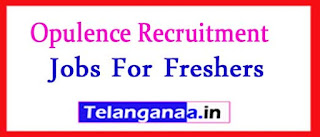 Opulence Recruitment 2017 Jobs For Freshers Apply