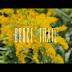 #Toronto Summers- Bruce Trail (dir. by 3rdreye .@shotby3rdeye)