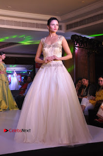 South Indian Celebrities Pos at Love For Handloom Collection Fashion Show  0137.jpg