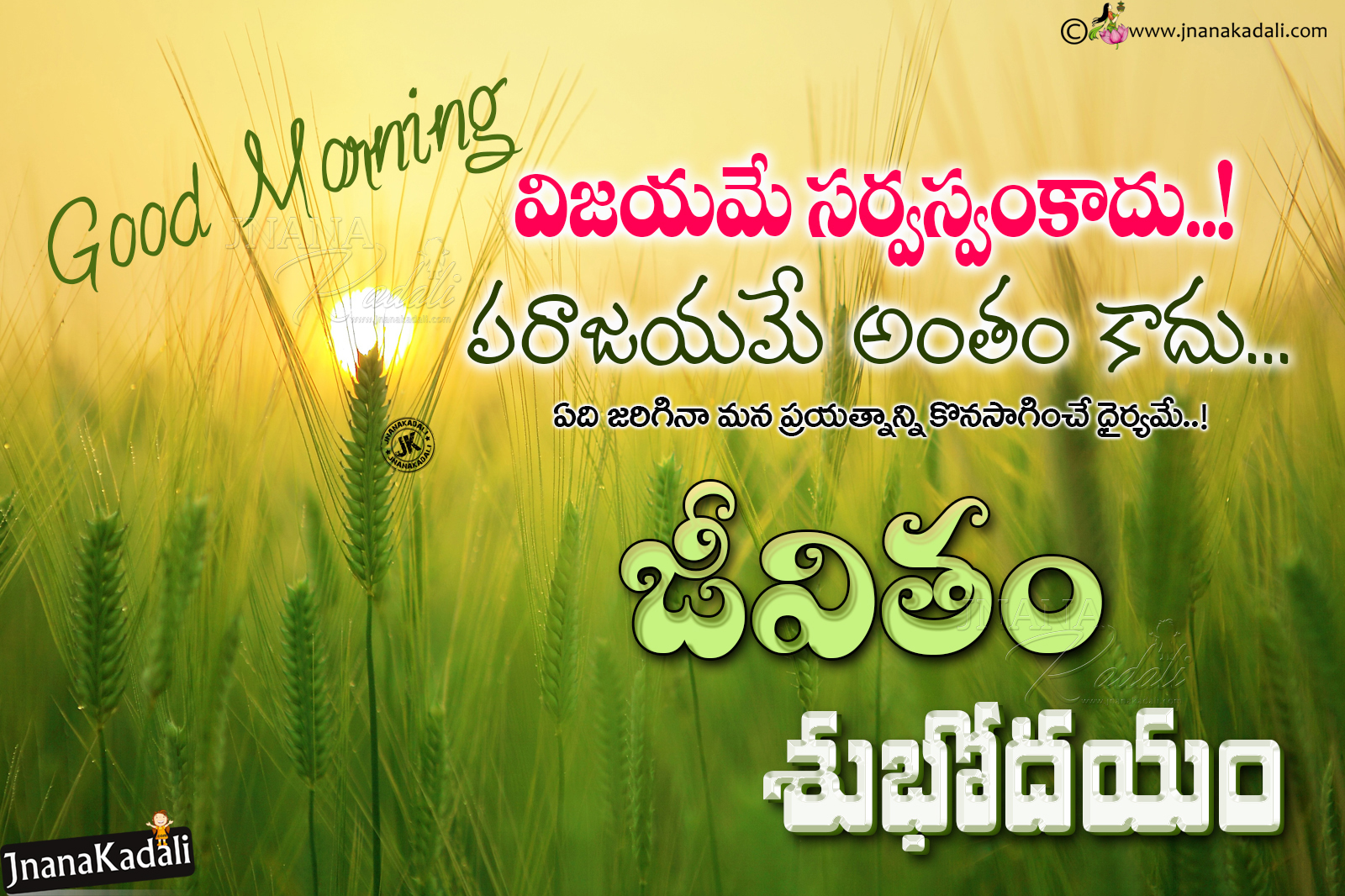 Best Good Morning Wishes Messages Quotes Greetings Hd Wallpapers In