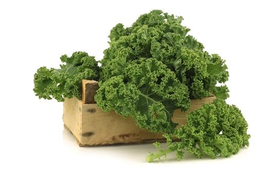Jenis Sayuran Untuk Diet