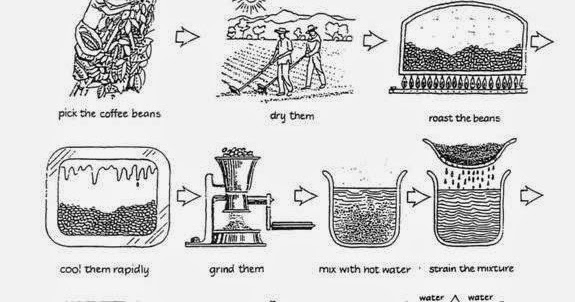 English Studio Pare: The diagram below shows how coffee is