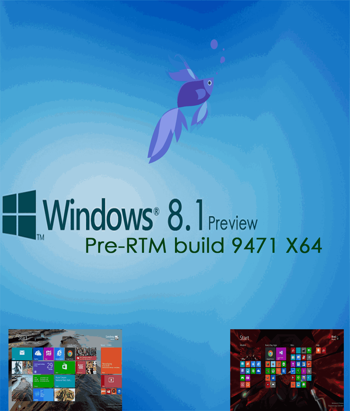 Windows 8 1 Pre