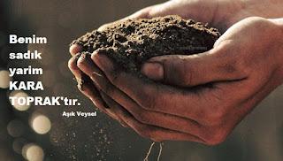 toprak nedir, toprak günü, dünya toprak günü, 5 aralık, 5 aralık dünya toprak günü neden kutlanır, toprak günü neden 5 aralık, toprak ile ilgili ilginç bilgiler, kutlama mesajları