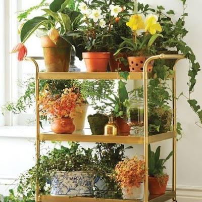 jardim-em-pequeno-espaço-no-carrinho-de-bar