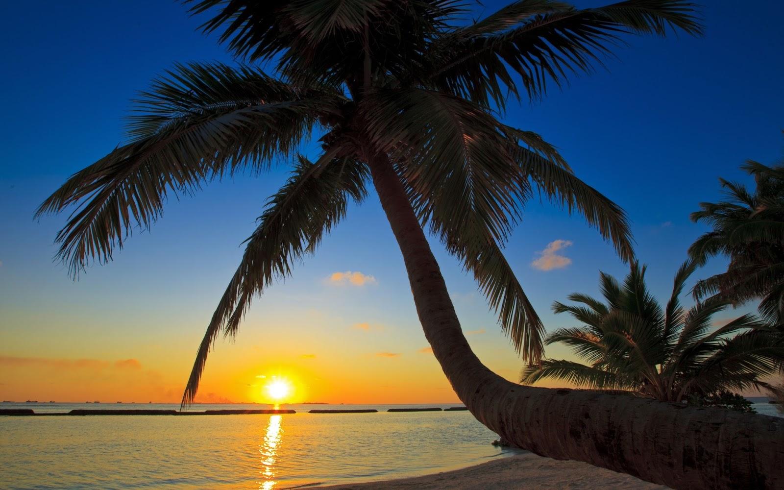 gambar matahari terbit