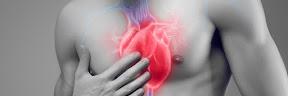 Pengertian Arteri Koroner dan Seberapa Penting Perannya