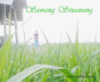 Sawang Sinawang
