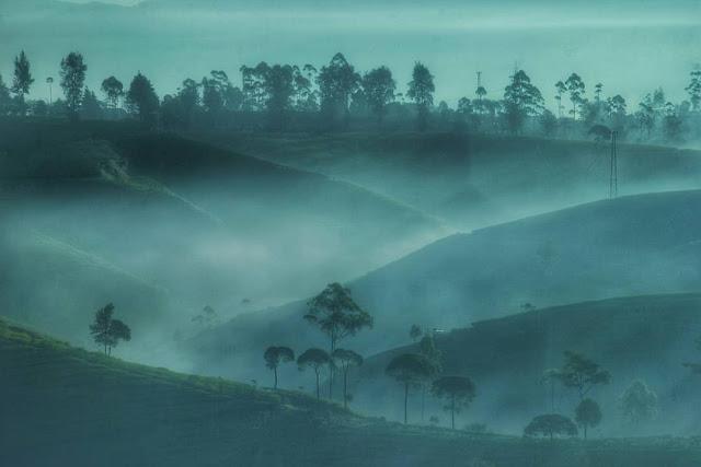 kabut di bukit cukul