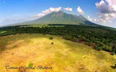 merupakan tanah yang di lindungi oleh negara dari perkembangan insan dan polusi 12 TAMAN NASIONAL DI PULAU JAWA