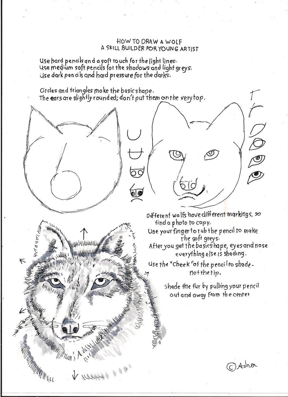 how to draw worksheets for the young artist how to draw a wolf a drawing skill builder for a. Black Bedroom Furniture Sets. Home Design Ideas