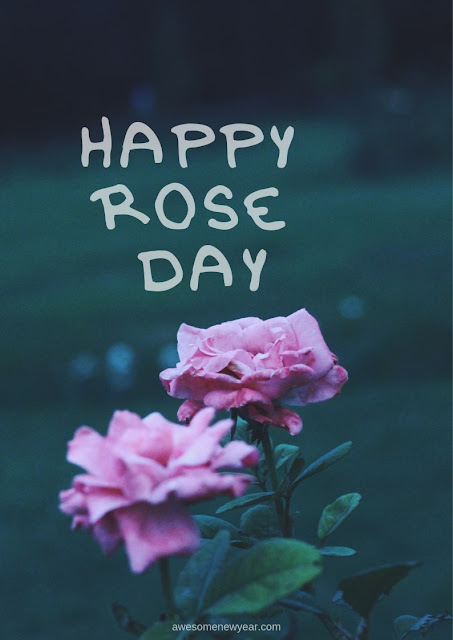 Happy Rose Day Images 2019