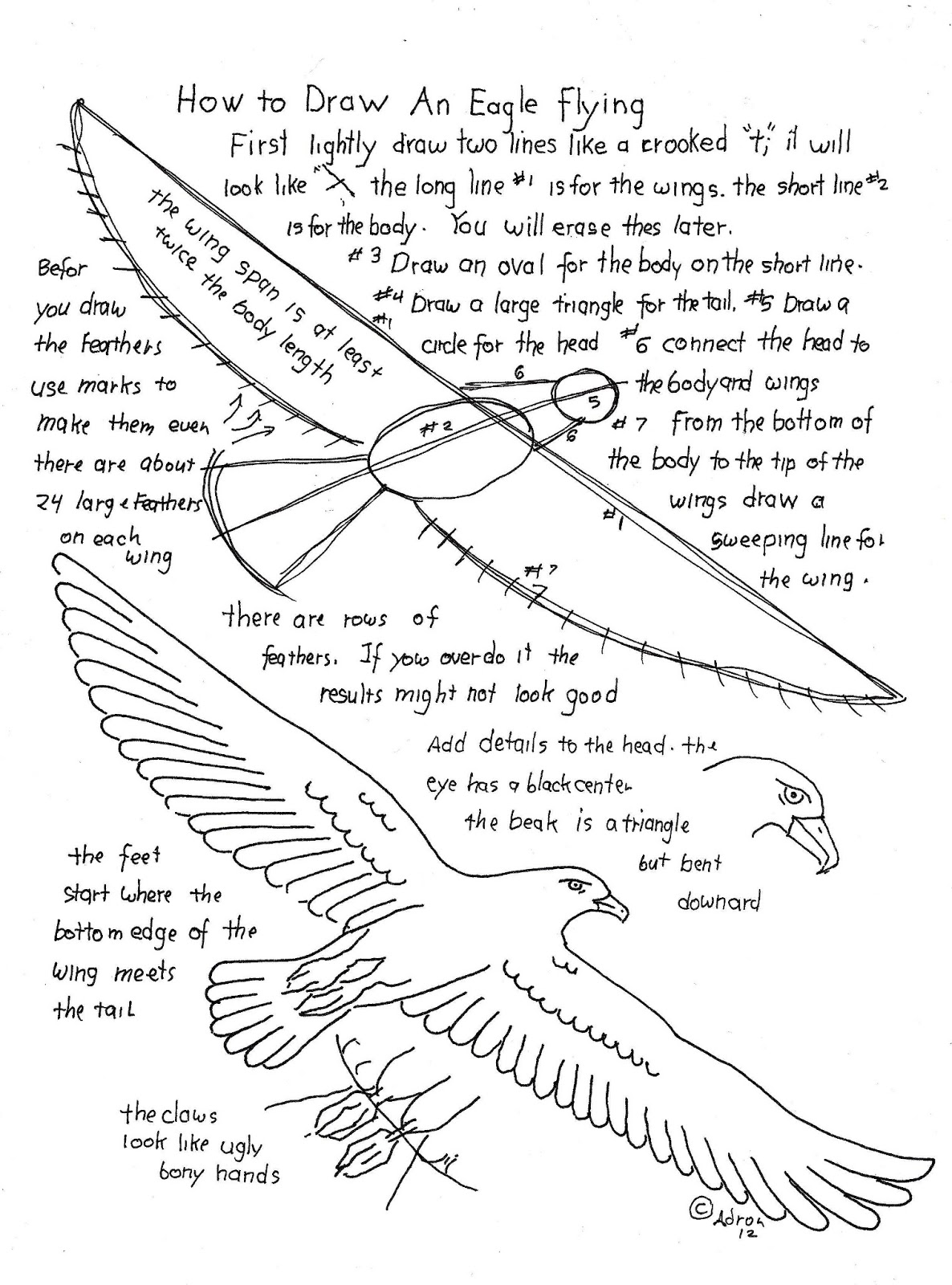 How To Draw Worksheets For The Young Artist How To Draw A Flying Eagle Worksheet And Lesson