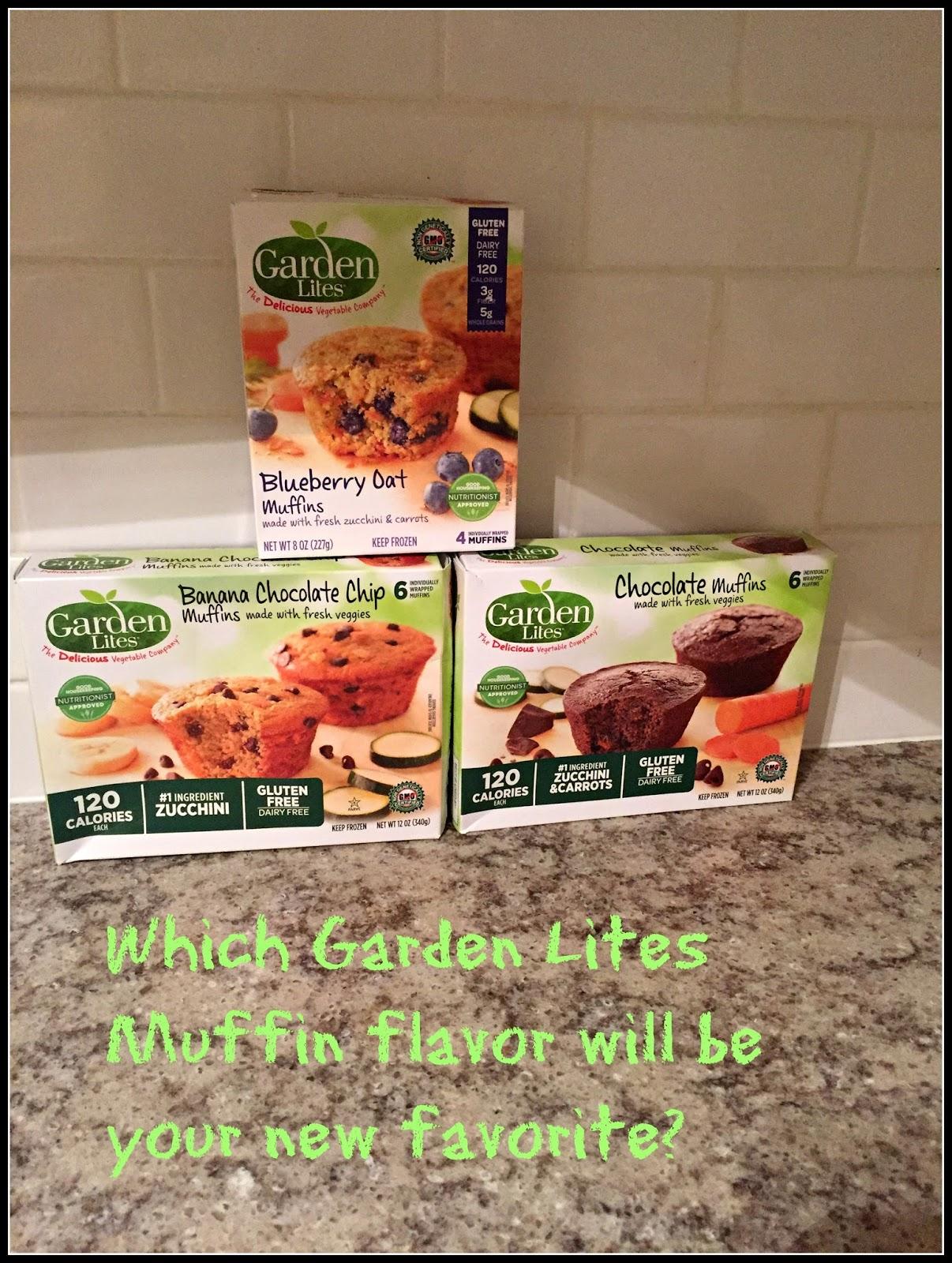 Sammi 39 s blog of life - Garden lites blueberry oat muffins ...