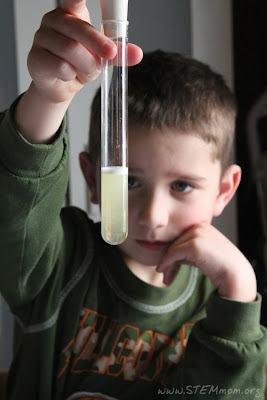 Boy with test tube; pH indicator lab from STEM Mom.org