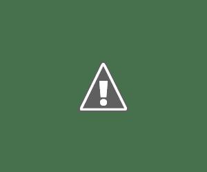 Black Clover (50/??) (150MB) (HDL) (Sub Español) (Mega)